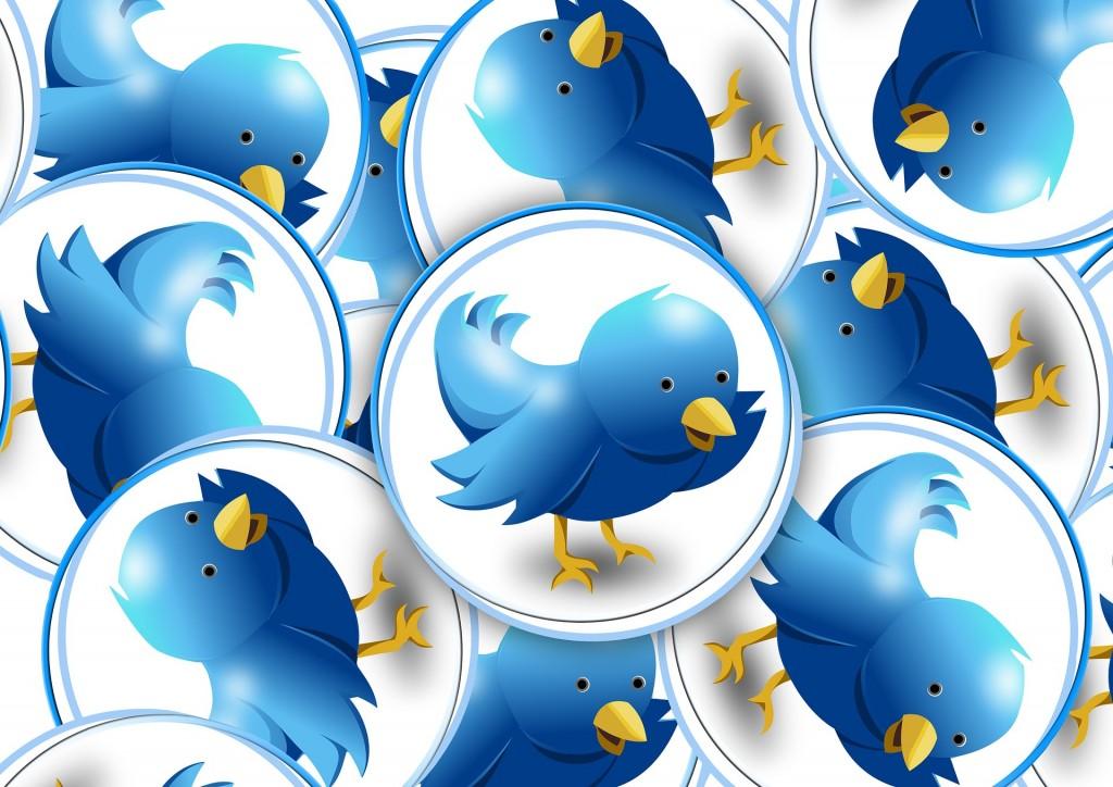 encuestas por twitter